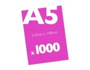 1000 A5 Flyers